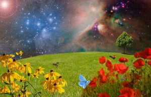 green meadow with flowers in space