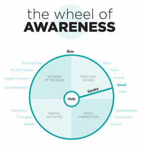 wheel of awareness